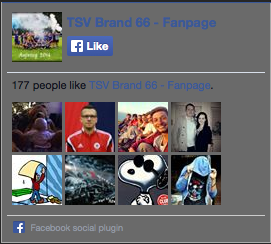 TSV Brand Fanpage